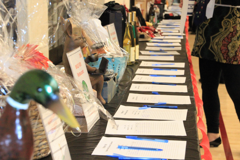 100+ Silent Auctions items are ready for bidding